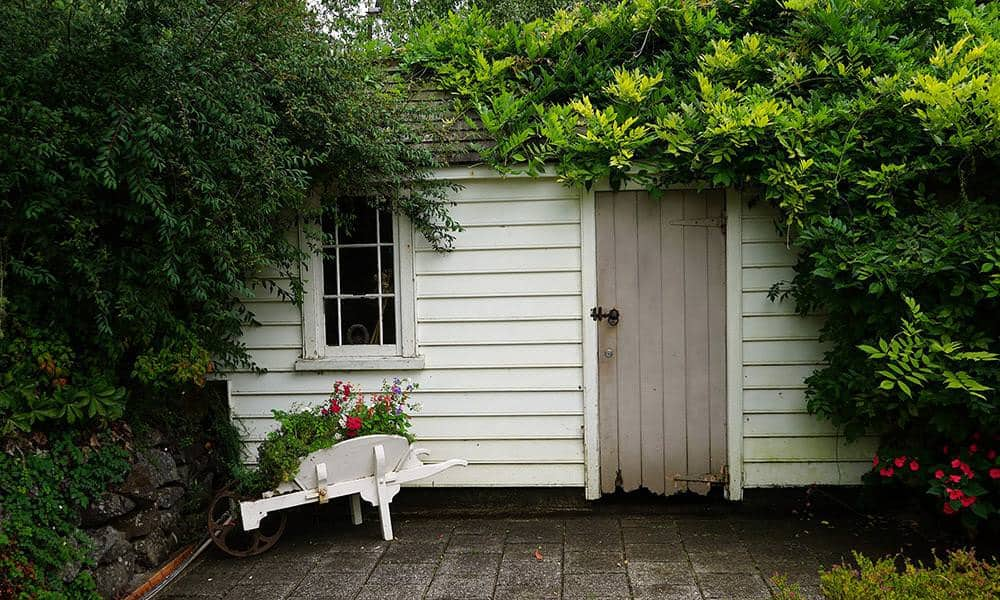 Weißes Gartenhaus, vom Efeu überwuchert