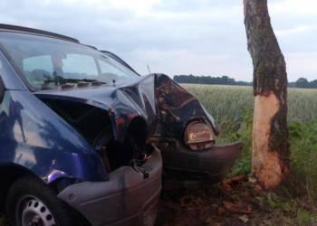 Der Renault war frontal gegen einen Baum geprallt. - © Polizei Rahden