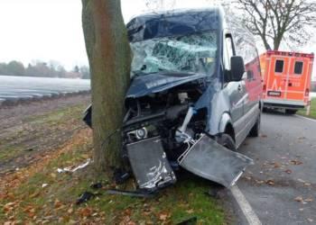 Trotz des heftigen Aufpralls gegen den Baum, erlitt der Fahrer des Kleintransporters nur leichte Verletzungen - © Polizei Rahden