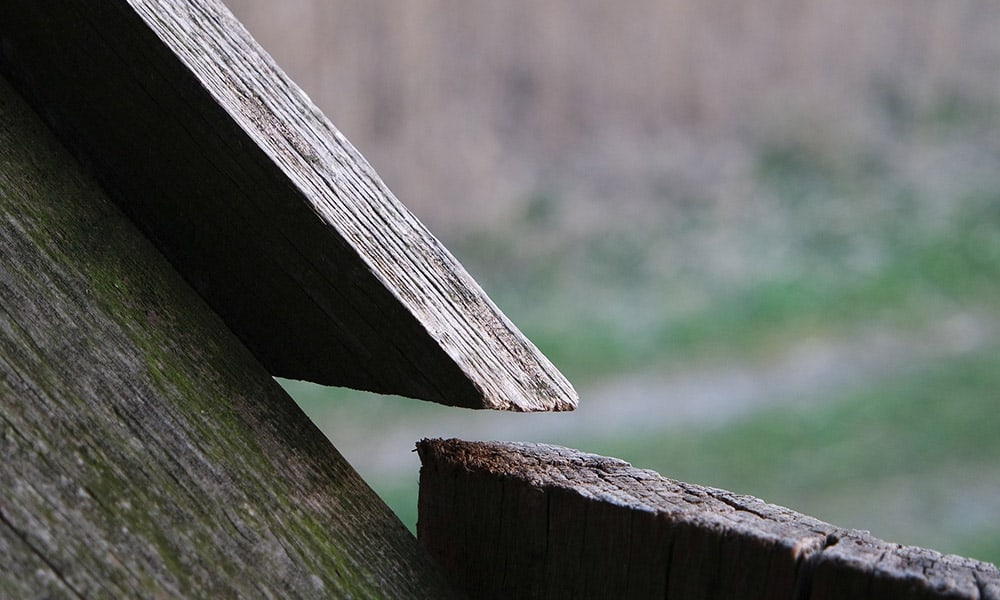 Holz, Plattform