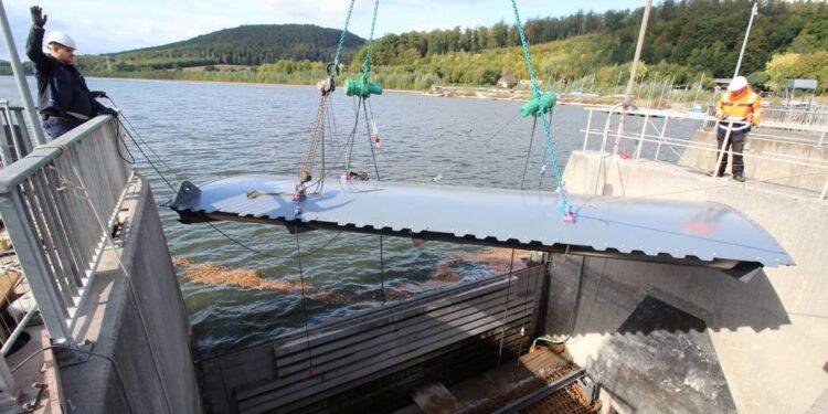Fischbauchklappe